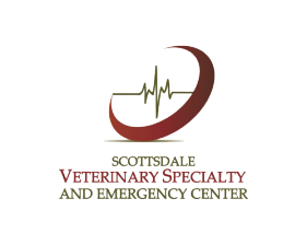 Scottsdale Veterinary Specialty And Emergency Center Home Page